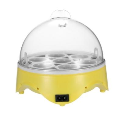 Kleiner Inkubator Brutschrank
